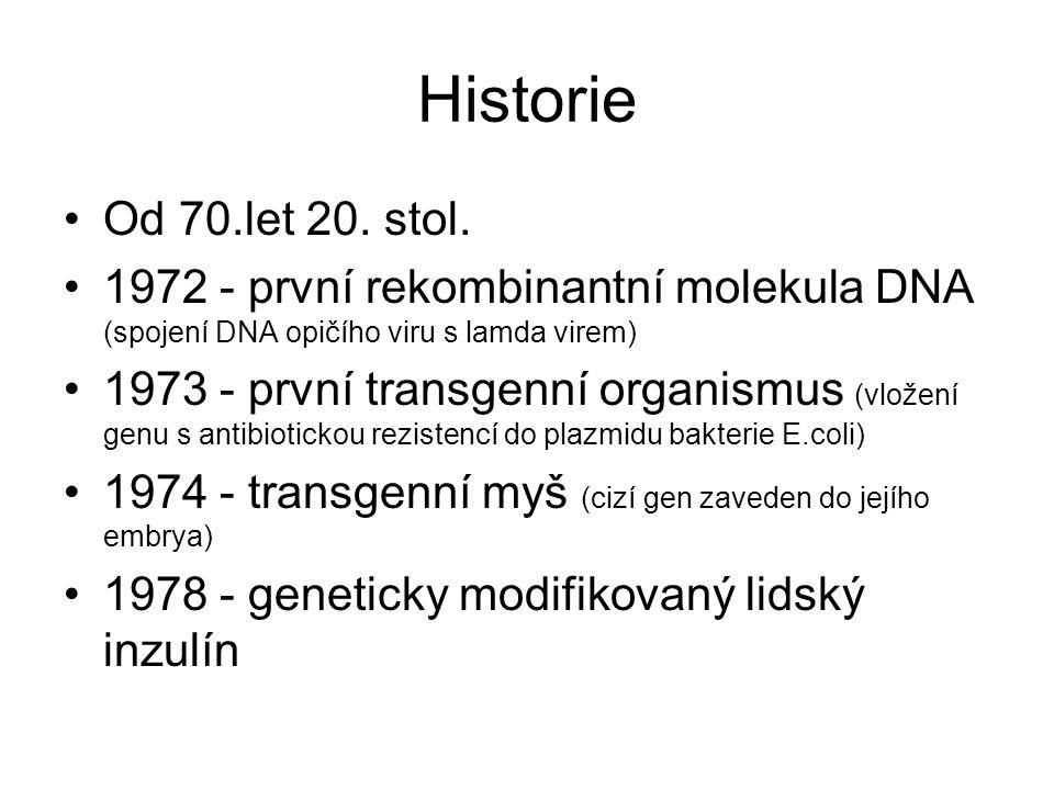 Historie •1986 - první pokusy s GM rostlinami (Francie, USA) → tabák odolný proti herbicidům •1994 - geneticky modifikovaná rajčata (delší skladovací doba) •2010 - první synteticky vytvořený bakteriální genom, který byl vložen do buňky bez DNA