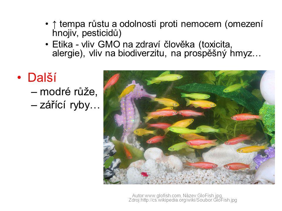 •↑ tempa růstu a odolnosti proti nemocem (omezení hnojiv, pesticidů) •Etika - vliv GMO na zdraví člověka (toxicita, alergie), vliv na biodiverzitu, na