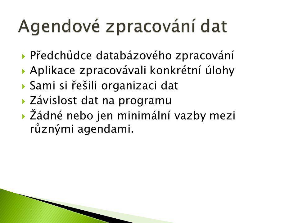  Předchůdce databázového zpracování  Aplikace zpracovávali konkrétní úlohy  Sami si řešili organizaci dat  Závislost dat na programu  Žádné nebo
