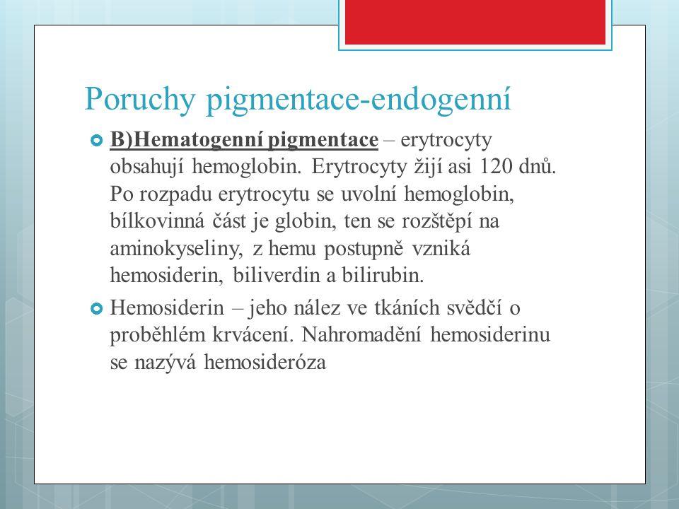 Poruchy pigmentace-endogenní  B)Hematogenní pigmentace – erytrocyty obsahují hemoglobin. Erytrocyty žijí asi 120 dnů. Po rozpadu erytrocytu se uvolní