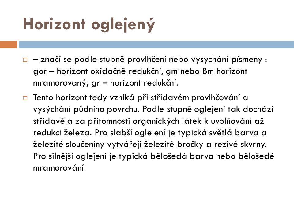 Horizont oglejený  – značí se podle stupně provlhčení nebo vysychání písmeny : gor – horizont oxidačně redukční, gm nebo Bm horizont mramorovaný, gr
