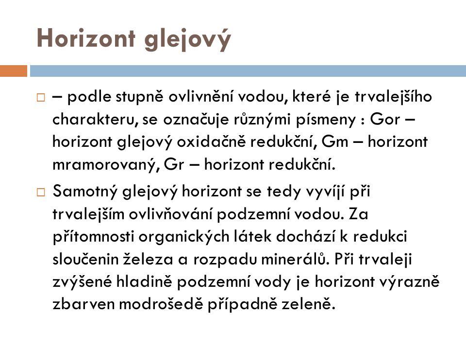 Horizont glejový  – podle stupně ovlivnění vodou, které je trvalejšího charakteru, se označuje různými písmeny : Gor – horizont glejový oxidačně redu