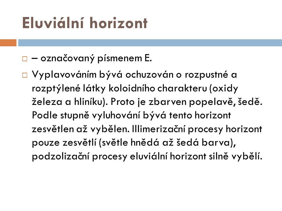 Eluviální horizont  – označovaný písmenem E.  Vyplavováním bývá ochuzován o rozpustné a rozptýlené látky koloidního charakteru (oxidy železa a hliní