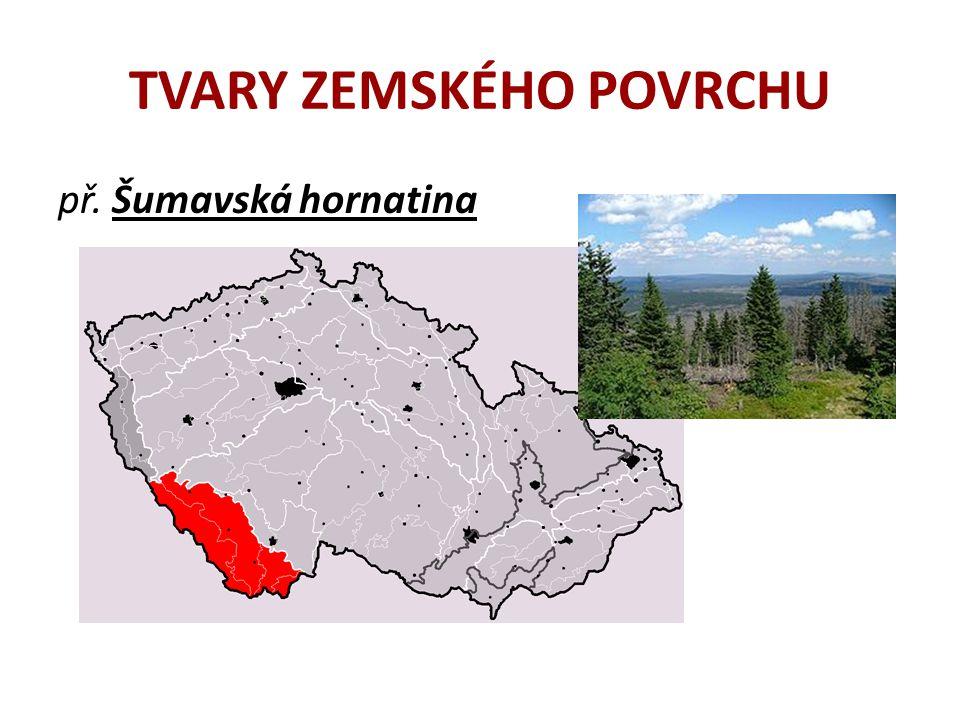 TVARY ZEMSKÉHO POVRCHU e) velehornatina – krajina s velice příkrými svahy a hluboce zaříznutými údolími, výškový rozdíl mezi dnem údolí a vrcholky hor přesahují 600 m.