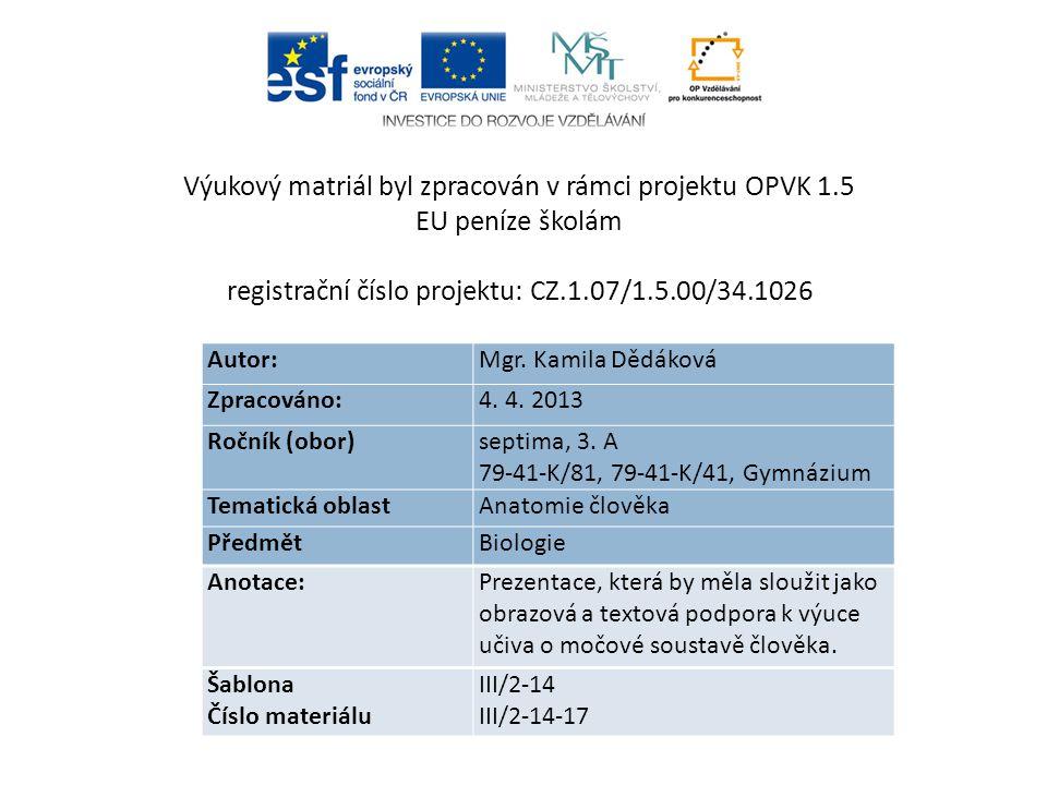 Autor: Mgr.Kamila Dědáková Zpracováno: 4. 4. 2013 Ročník (obor) septima, 3.