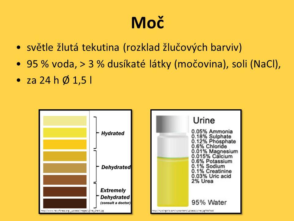 Moč •světle žlutá tekutina (rozklad žlučových barviv) •95 % voda, > 3 % dusíkaté látky (močovina), soli (NaCl), •za 24 h Ø 1,5 l http://nursingcrib.com/wp-content/uploads/urine.jpg?9d7bd4http://www.navyfitness.org/_uploads/images/Urine_Chart.jpg
