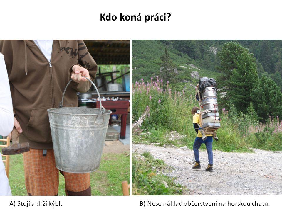 Kdo koná práci? A) Stojí a drží kýbl.B) Nese náklad občerstvení na horskou chatu.