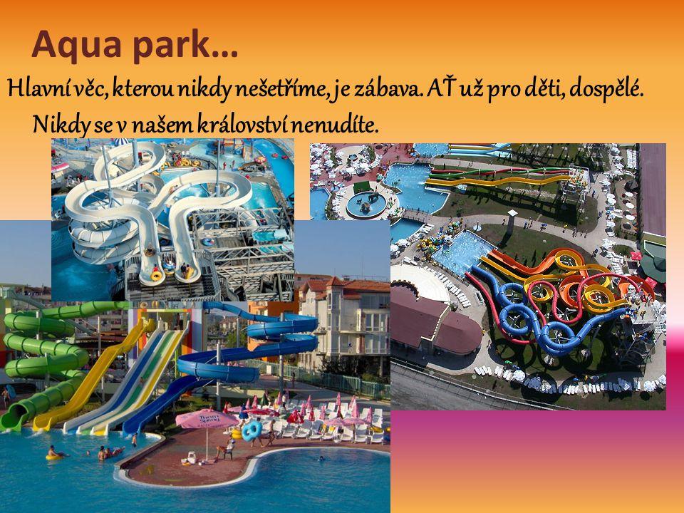 Aqua park… Hlavní věc, kterou nikdy nešetříme, je zábava. AŤ už pro děti, dospělé. Nikdy se v našem království nenudíte.
