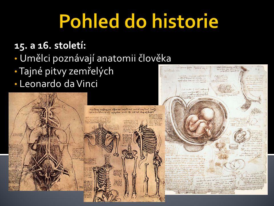 15. a 16. století: • Umělci poznávají anatomii člověka • Tajné pitvy zemřelých • Leonardo da Vinci