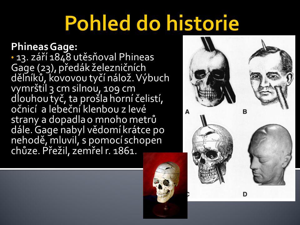 Phineas Gage: • 13. září 1848 utěsňoval Phineas Gage (23), předák železničních dělníků, kovovou tyčí nálož. Výbuch vymrštil 3 cm silnou, 109 cm dlouho