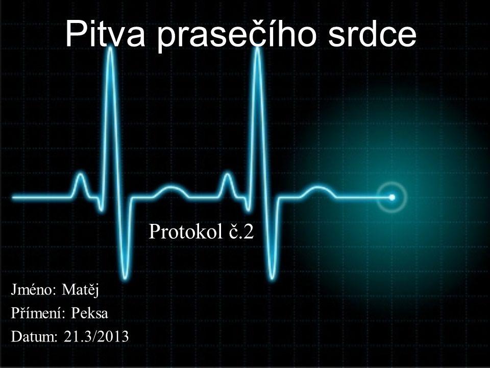 Pitva prasečího srdce Protokol č.2 Jméno: Matěj Přímení: Peksa Datum: 21.3/2013
