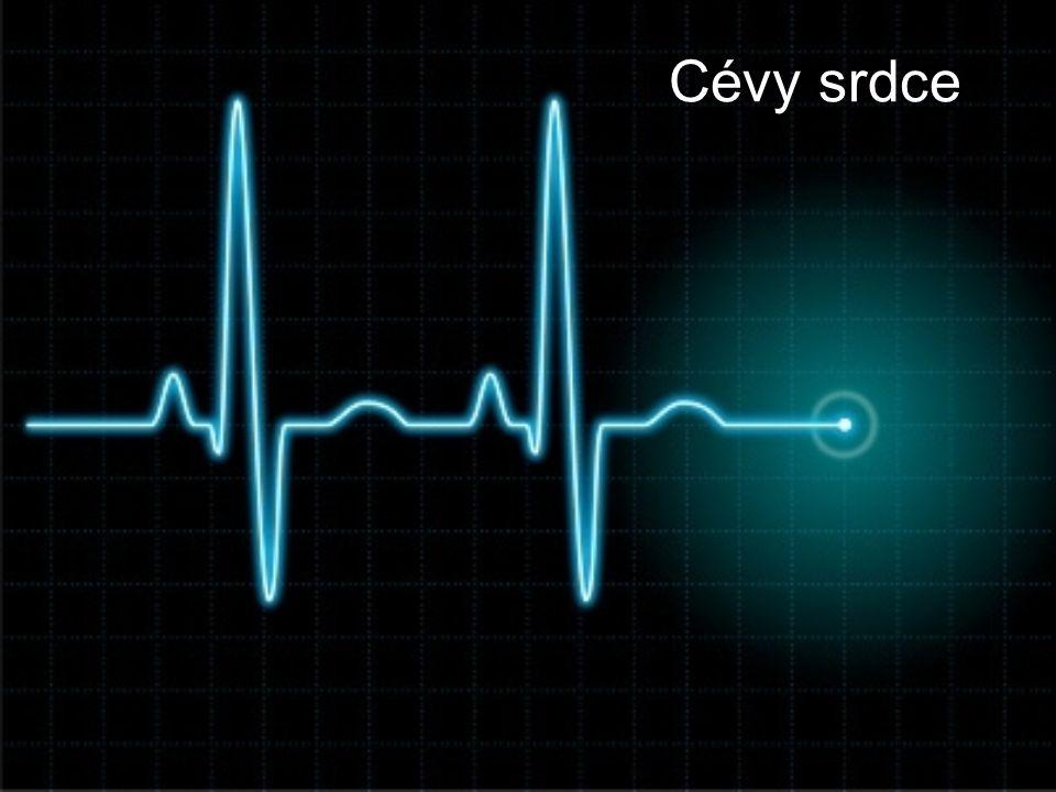 Věnčité tepny (Kororální cévy) •Zajišťují vlastní zásobování srdce.