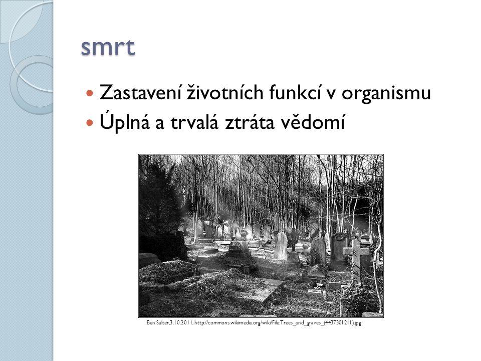 smrt  Zastavení životních funkcí v organismu  Úplná a trvalá ztráta vědomí Ben Salter,3.10.2011, http://commons.wikimedia.org/wiki/File:Trees_and_gr