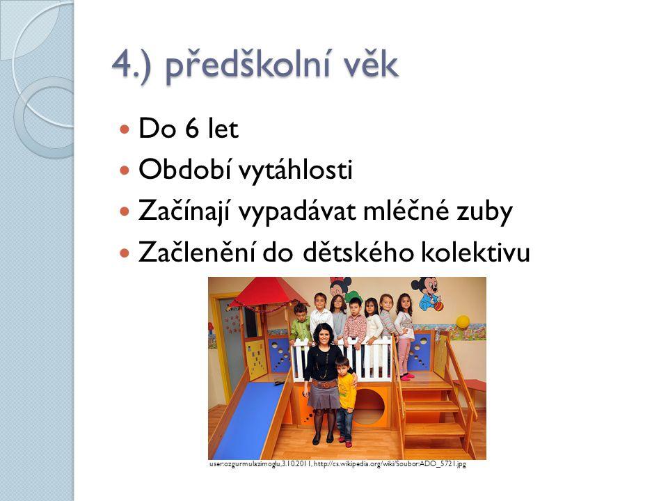 4.) předškolní věk  Do 6 let  Období vytáhlosti  Začínají vypadávat mléčné zuby  Začlenění do dětského kolektivu user:ozgurmulazimoglu,3.10.2011,