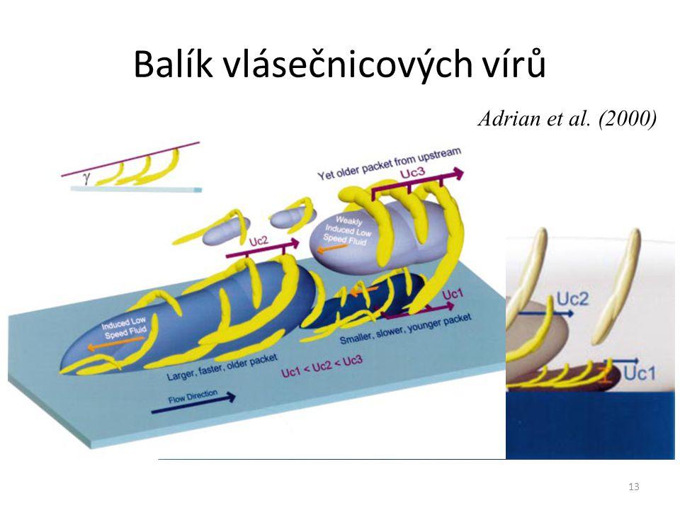 13 Balík vlásečnicových vírů Adrian et al. (2000)