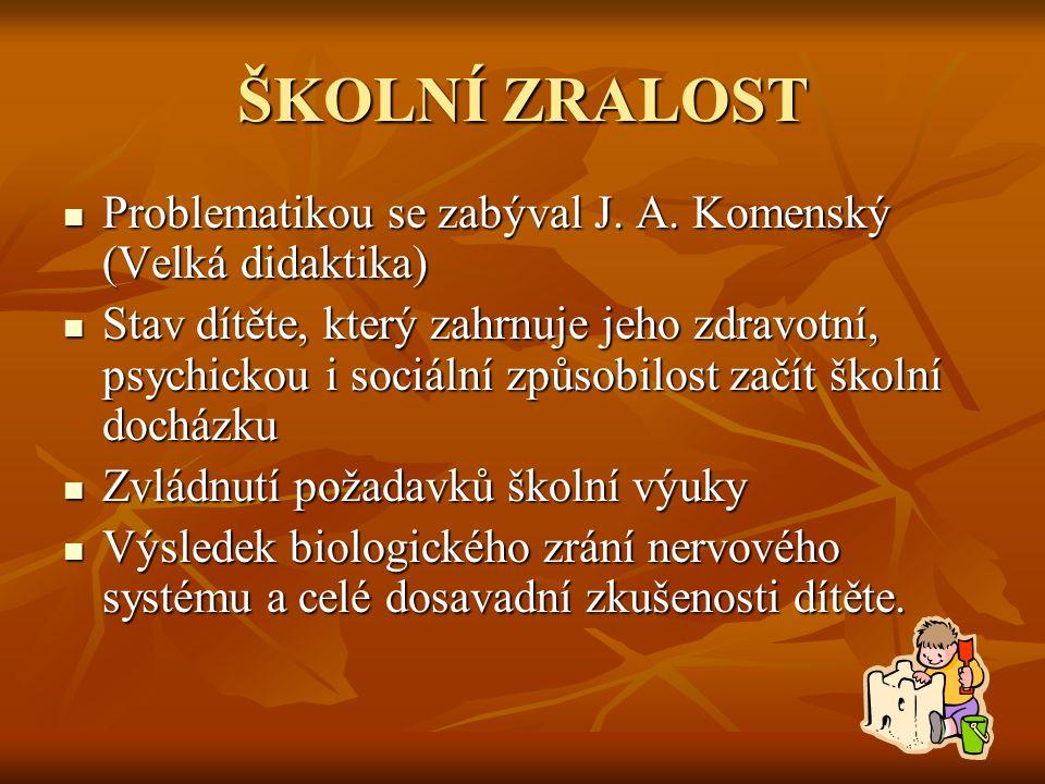  Doporučená literatura  LIPINKSÁ, M.Rozvoj grafomotoriky a podpora psaní.