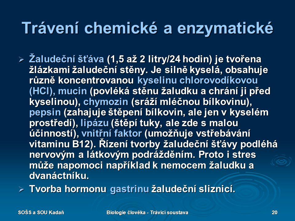 SOŠS a SOU KadaňBiologie člověka - Trávicí soustava20 Trávení chemické a enzymatické  Žaludeční šťáva (1,5 až 2 litry/24 hodin) je tvořena žlázkami žaludeční stěny.
