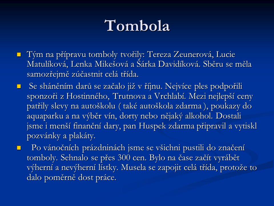 Tombola  Tým na přípravu tomboly tvořily: Tereza Zeunerová, Lucie Matulíková, Lenka Mikešová a Šárka Davidíková. Sběru se měla samozřejmě zúčastnit c