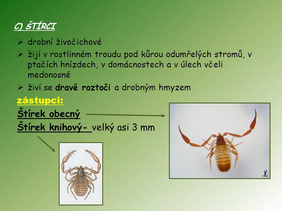 C) ŠTÍRCI  drobní živočichové  žijí v rostlinném troudu pod kůrou odumřelých stromů, v ptačích hnízdech, v domácnostech a v úlech včeli medonosné  živí se dravě roztoči a drobným hmyzem zástupci: Štírek obecný Štírek knihový- velký asi 3 mm