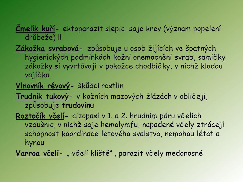 Čmelík kuří- ektoparazit slepic, saje krev (význam popelení drůbeže) !! Zákožka svrabová- způsobuje u osob žijících ve špatných hygienických podmínkác