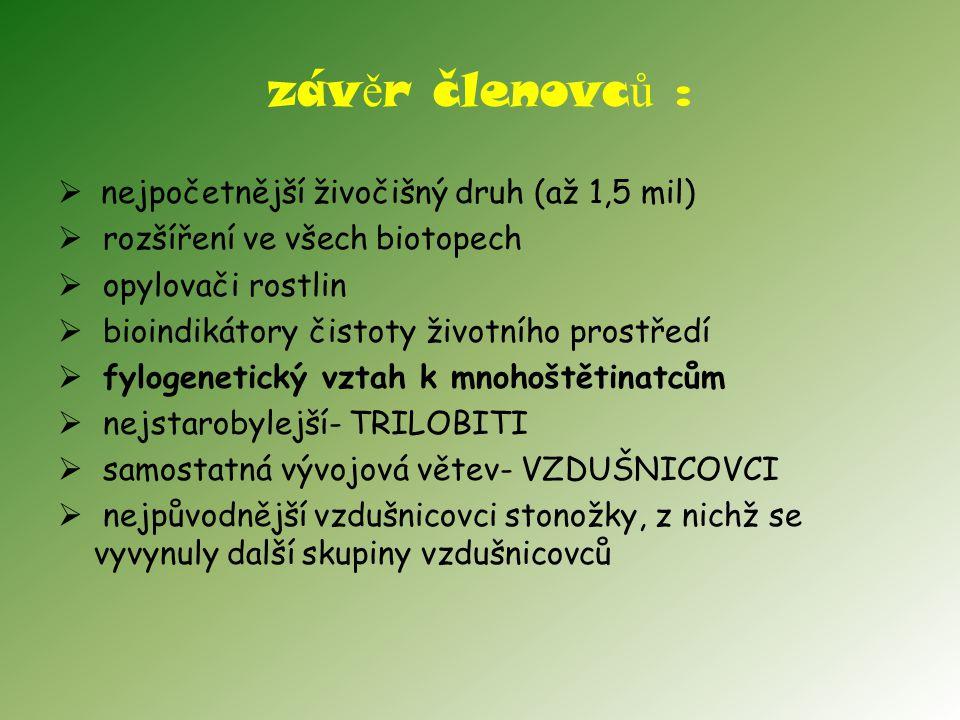 záv ě r členovc ů :  nejpočetnější živočišný druh (až 1,5 mil)  rozšíření ve všech biotopech  opylovači rostlin  bioindikátory čistoty životního p