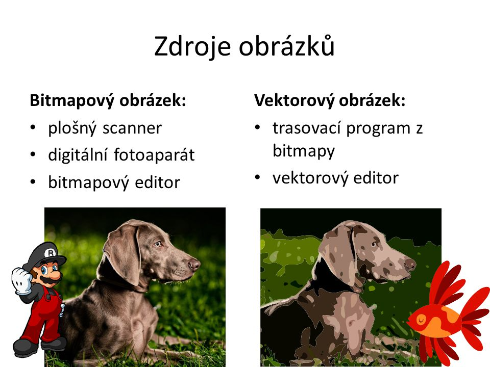 Zdroje obrázků Bitmapový obrázek: • plošný scanner • digitální fotoaparát • bitmapový editor Vektorový obrázek: • trasovací program z bitmapy • vektor