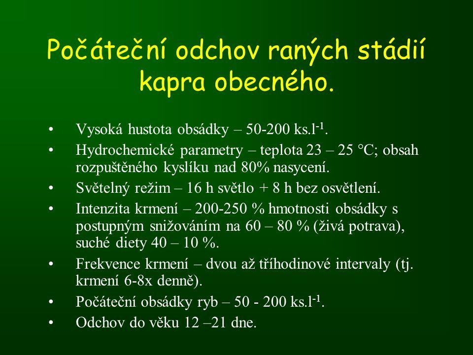 Počáteční odchov raných stádií kapra obecného.•Vysoká hustota obsádky – 50-200 ks.l -1.