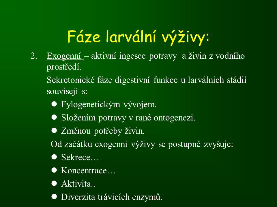 Fáze larvální výživy: 2.Exogenní – aktivní ingesce potravy a živin z vodního prostředí.