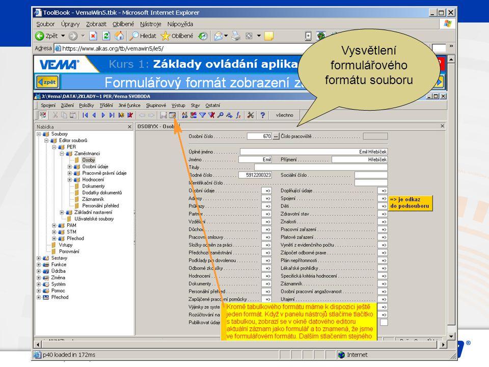 Strana: 119, © Vema, a. s. Vysvětlení formulářového formátu souboru