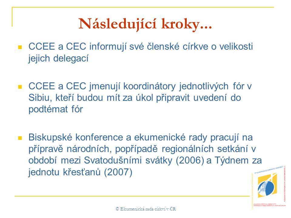 © Ekumenická rada církví v ČR Následující kroky...