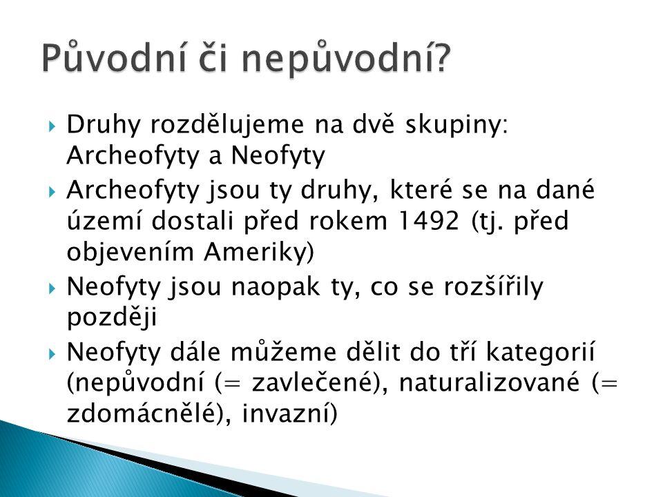  Druhy rozdělujeme na dvě skupiny: Archeofyty a Neofyty  Archeofyty jsou ty druhy, které se na dané území dostali před rokem 1492 (tj. před objevení