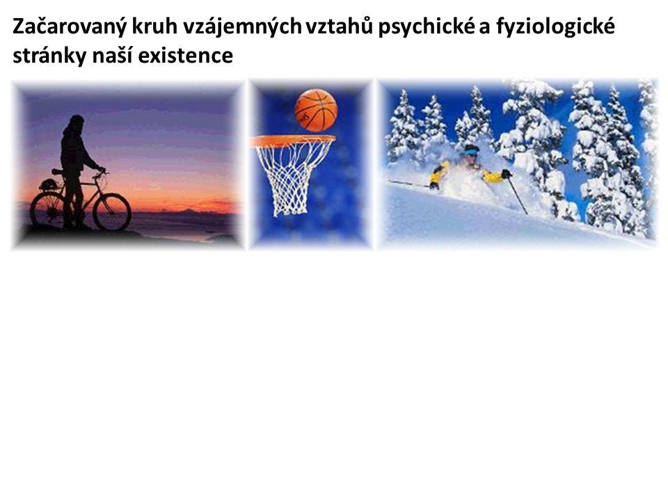 Začarovaný kruh vzájemných vztahů psychické a fyziologické stránky naší existence