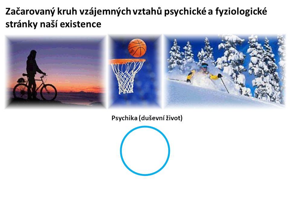 Psychika (duševní život)