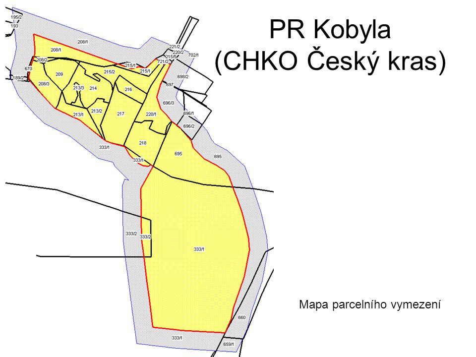PR Kobyla (CHKO Český kras) Mapa parcelního vymezení