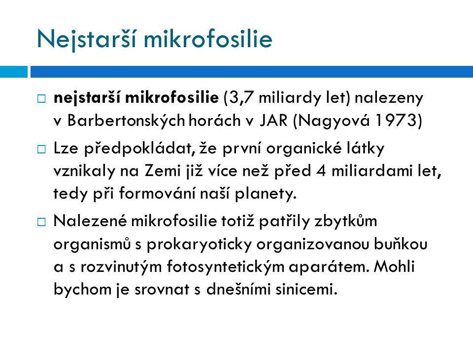 Nejstarší mikrofosilie  nejstarší mikrofosilie (3,7 miliardy let) nalezeny v Barbertonských horách v JAR (Nagyová 1973)  Lze předpokládat, že první