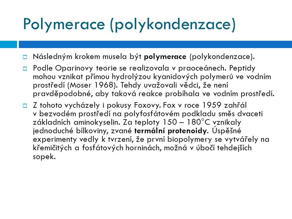 Polymerace (polykondenzace)  Následným krokem musela být polymerace (polykondenzace).  Podle Oparinovy teorie se realizovala v praoceánech. Peptidy