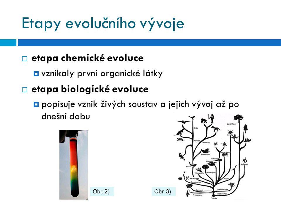 Etapy evolučního vývoje  etapa chemické evoluce  vznikaly první organické látky  etapa biologické evoluce  popisuje vznik živých soustav a jejich