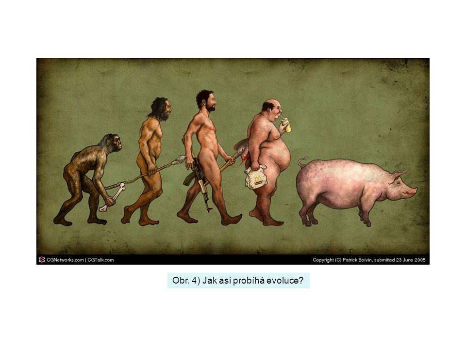 Obr. 4) Jak asi probíhá evoluce?