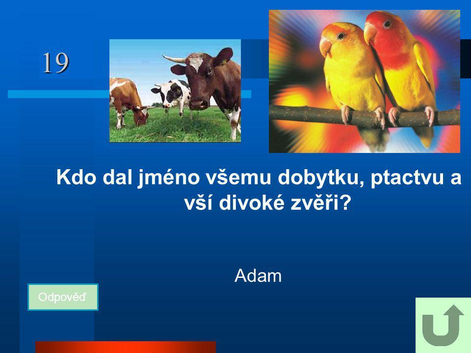 19 Kdo dal jméno všemu dobytku, ptactvu a vší divoké zvěři? Odpověď Adam