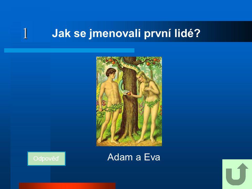 1 Jak se jmenovali první lidé? Odpověď Adam a Eva
