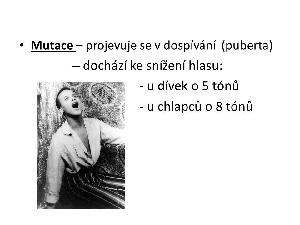 • Mutace – projevuje se v dospívání (puberta) – dochází ke snížení hlasu: - u dívek o 5 tónů - u chlapců o 8 tónů