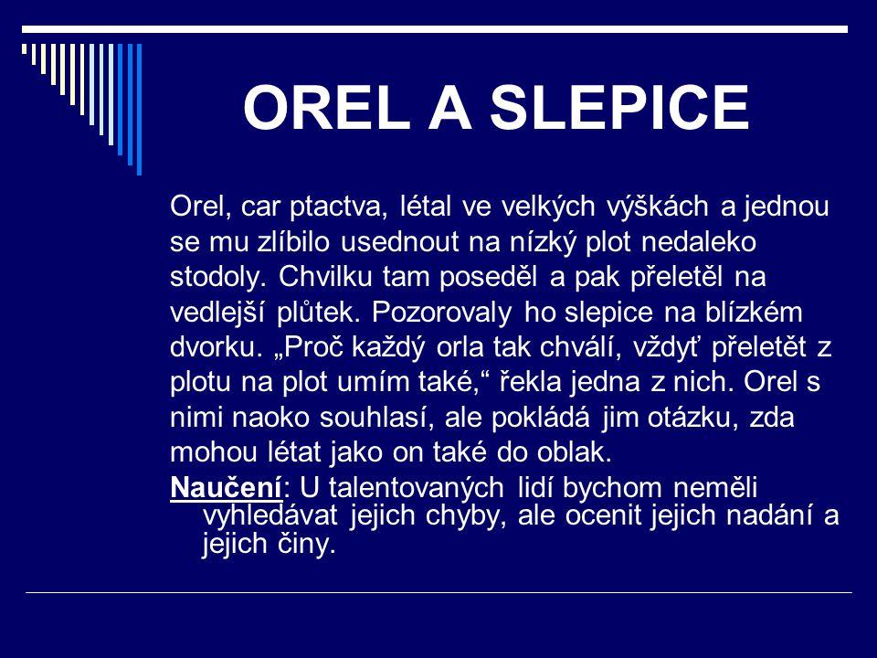 OREL A SLEPICE Orel, car ptactva, létal ve velkých výškách a jednou se mu zlíbilo usednout na nízký plot nedaleko stodoly. Chvilku tam poseděl a pak p
