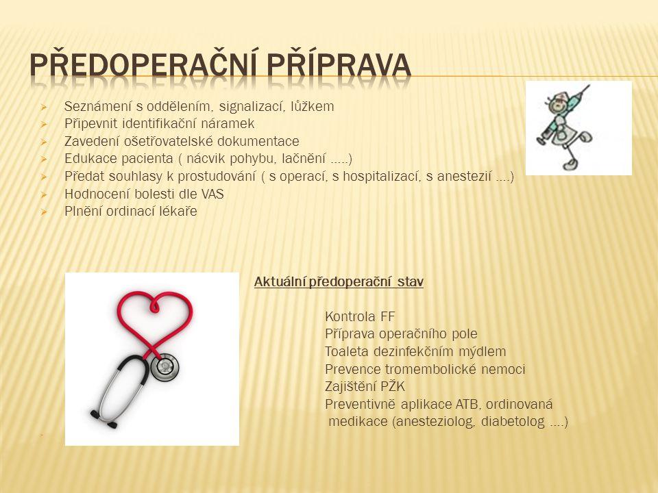  Seznámení s oddělením, signalizací, lůžkem  Připevnit identifikační náramek  Zavedení ošetřovatelské dokumentace  Edukace pacienta ( nácvik pohyb
