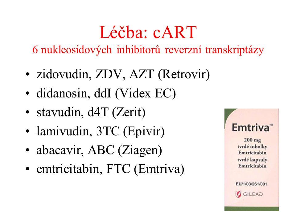 Léčba: cART 6 nukleosidových inhibitorů reverzní transkriptázy •zidovudin, ZDV, AZT (Retrovir) •didanosin, ddI (Videx EC) •stavudin, d4T (Zerit) •lami