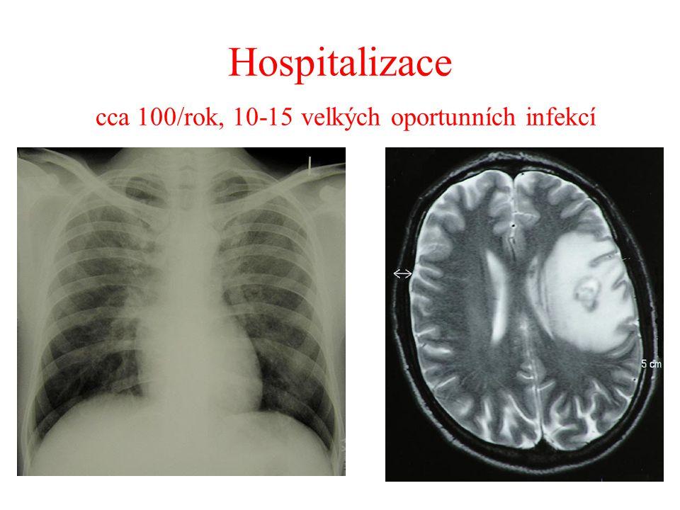 Hospitalizace cca 100/rok, 10-15 velkých oportunních infekcí