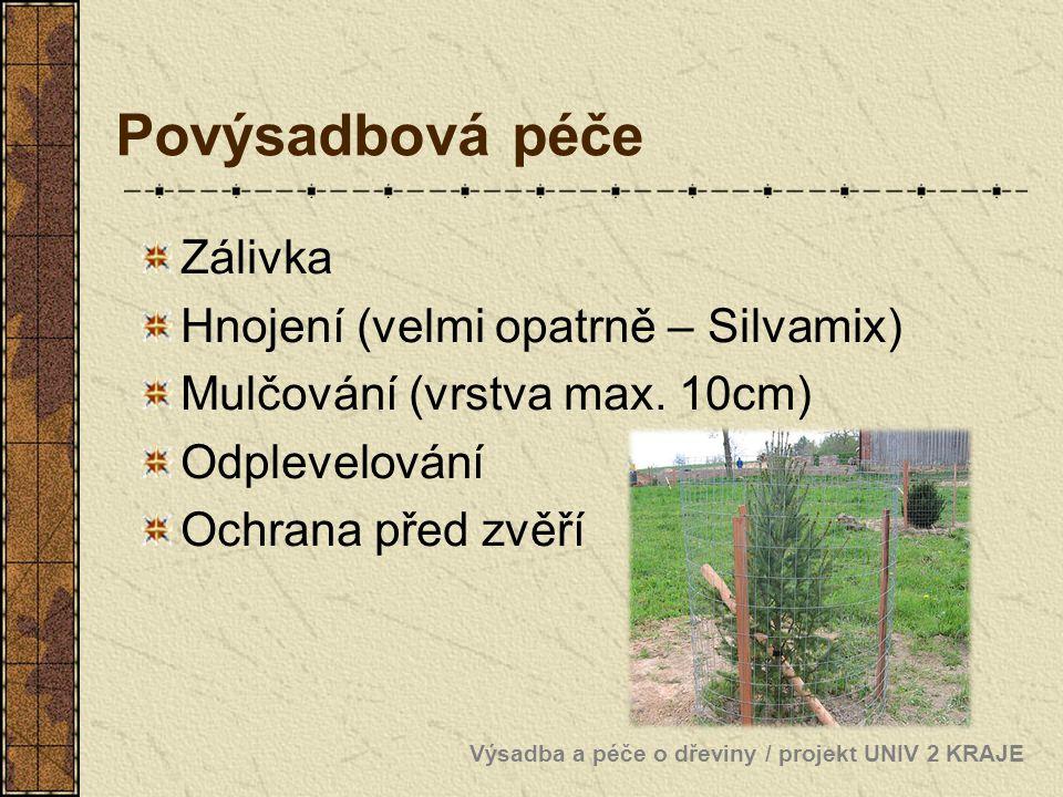 Povýsadbová péče Zálivka Hnojení (velmi opatrně – Silvamix) Mulčování (vrstva max. 10cm) Odplevelování Ochrana před zvěří Výsadba a péče o dřeviny / p
