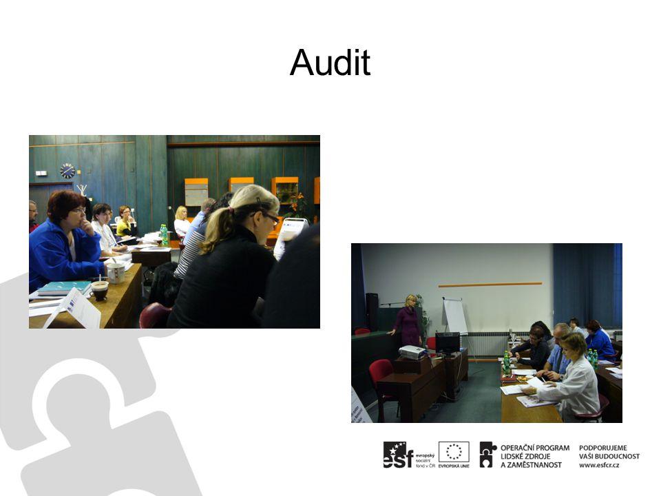 •Zdravotničtí a THP pracovníci  2 skupiny - 1den školení – 31 účastníků Obsah vzdělávání: –Úvod •Proces managementu jakosti •Princip a cíle interního auditu ve zdravotnickém zařízení –Interní audit jako dokumentovaný proces •Vybrané kapitoly ISO 19011 – základní požadavky na provádění interního auditu ve zdravotnickém zařízení –Fáze interního auditu •Plánování interního auditu •Příprava auditora •Provedení auditu:sběr materiálů, porovnání, zkoumání, formulace závěru •Závěrečná zpráva •Dokumentace auditu –Profese interního auditora •Postavení interního auditora ve společnosti •Kvalifikace interního auditora •Práva a povinnosti interního auditora –Obsah směrnice o interním auditu –Praktický výcvik •Zadání praktické úlohy pro simulovaný interní audit - procvičení všech fází interního auditu