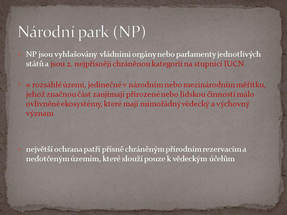  NP jsou vyhlašovány vládními orgány nebo parlamenty jednotlivých států a jsou 2. nejpřísněji chráněnou kategorií na stupnici IUCN  = rozsáhlé území