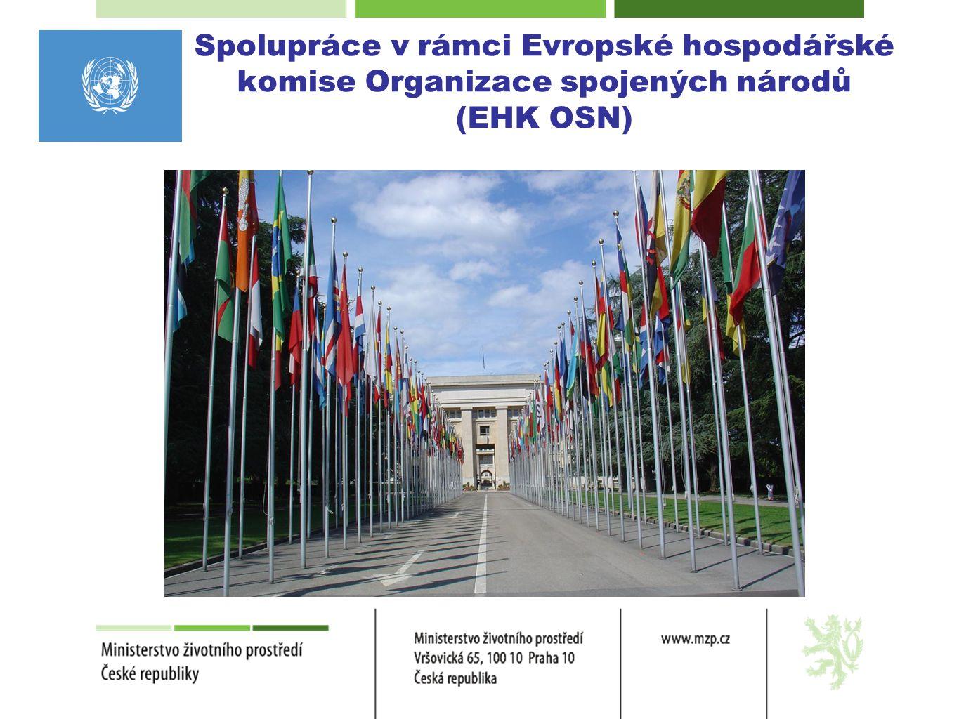 Spolupráce v rámci EHK OSN  Úmluva o ochraně a využívání hraničních vodních toků a mezinárodních jezer - Úmluva o vodách  Protokol o vodě a zdraví k Úmluvě o vodách  Smluvní strany k oběma dokumentům jsou z oblasti EHK OSN  Připravuje se dodatek k Úmluvě o vodách a k Protokolu o vodě a zdraví, podle kterých také státy mimo region EHK OSN mohou k Úmluvě o vodách přistoupit.