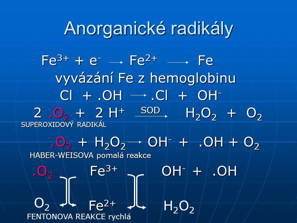 Anorganické radikály Fe 3+ + e - Fe 2+ Fe Fe 3+ + e - Fe 2+ Fe vyvázání Fe z hemoglobinu vyvázání Fe z hemoglobinu Cl +.OH.Cl + OH - Cl +.OH.Cl + OH -